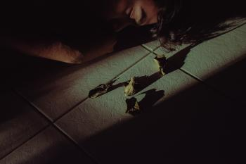 Person Sleeping Beside Dead Leaves