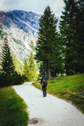 Person With Backpack Hiking Near Trees and Green Grass