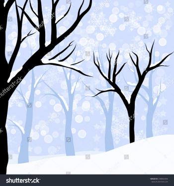 Photo of Bare trees and Snow