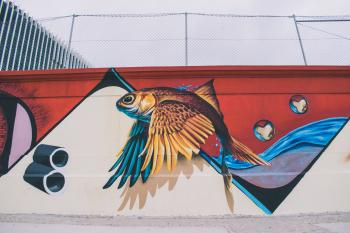 Photo of Brown, Blue, Red, and White Fish With Wings Wall Painting