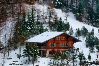 Photo of Chalet in the Forest