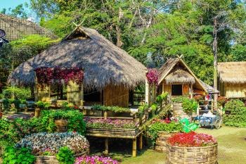Photo of Huts Surrounded by Flowers