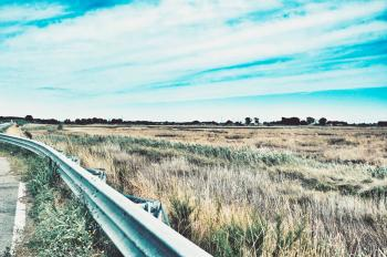 Photo of Road Railing Near Grasses