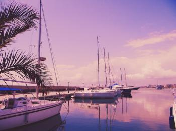 Photo of Sailboats on the Water