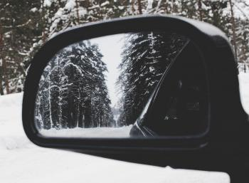Photo of Vehicle Wing Mirror With Tree As Reflection