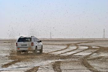 Photo of White Suv on Muddy Plain