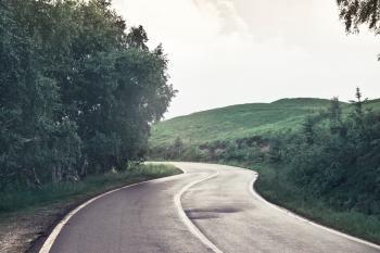 Photography of Asphalt Road Near Trees