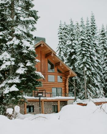 Photography of Brown House Surrounded by Trees Covered by Snow