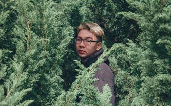 Photography of Man Near Pine Trees