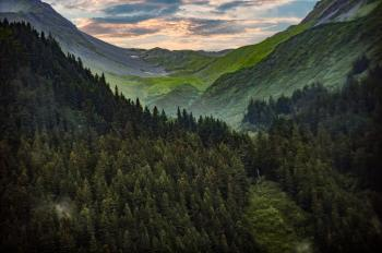 Photography Of Mountain Covered With Green Trees