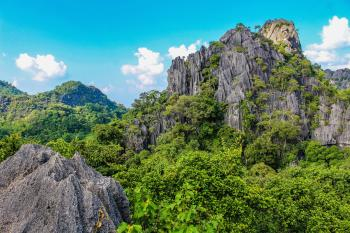 Photography of Mountain Covered With Trees