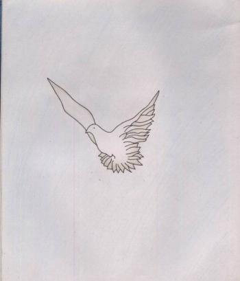 Pigeon drawing