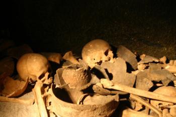 Pile of bones and skulls