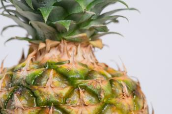 Pineapple Fruit