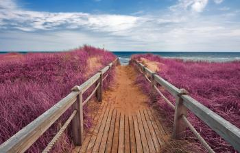 Pink Beach Boardwalk