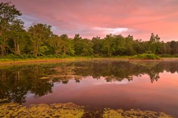 Pink Twilight Marsh - HDR