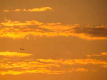 Plane and beautiful evening