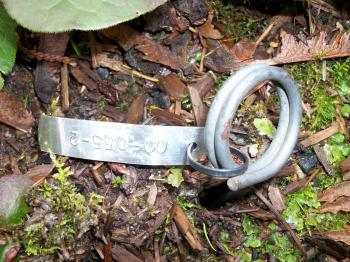 Plant tag