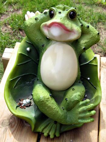 Plastic Frog