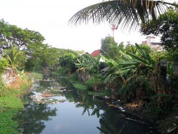 Polluted Thai canal