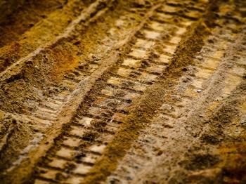 Prints in the Soil