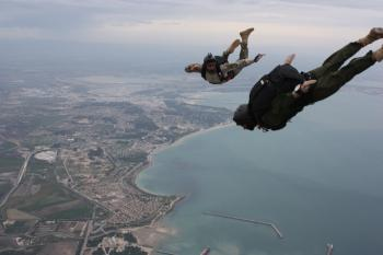 Professional Skydivers