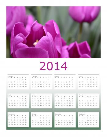 Purple Tulips 2014 Calendar