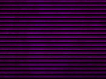 Purple Venetian Blinds Effect
