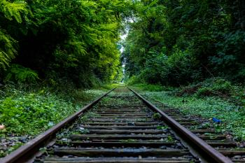 Railroad Track by Green Woods