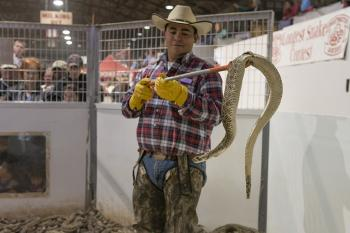 Rattlesnake Handler