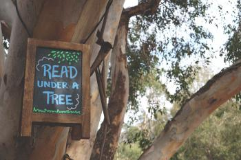 Read Under a Tree Signage Hanging on Branch Tree