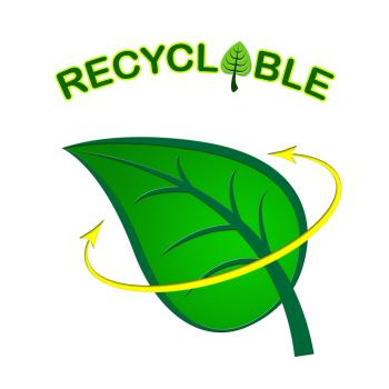 Recyclable Leaf Indicates Earth Friendly And Eco