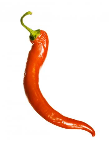 Red chilli pepper