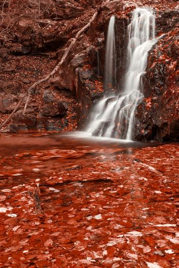 Red Grove Waterfall