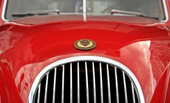 Red Jaguar