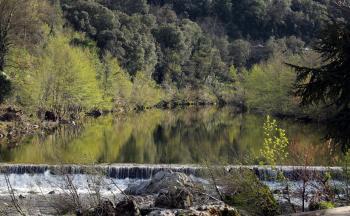 Reflexion on the water's Gardon