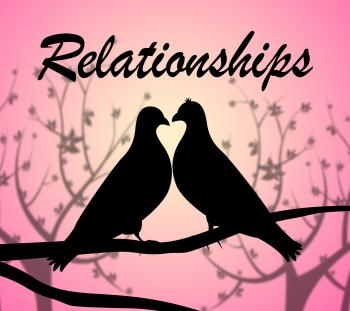 Relationships Doves Shows Find Love And Affection