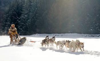 Riding Wolf