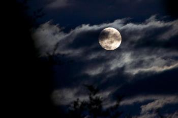 Rising Bad Moon