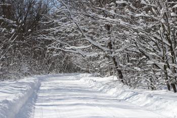 Road Full of Snow