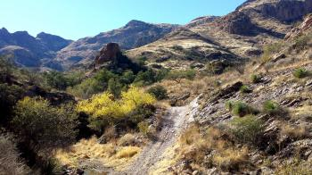 ROCK CORRAL CANYON - Atascosa Mts (12-22-13) (3)
