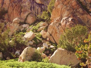 Rock Island Pass (12)