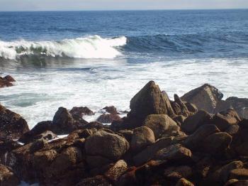 Rocky Shore
