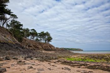 Rugged Beach Landscape - HDR