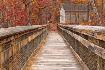 Rustic Autumn Boardwalk - Ruby Gold HDR