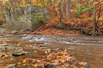 Rustic Fall Creek - HDR