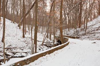 Rustic Winter Bridge Trail