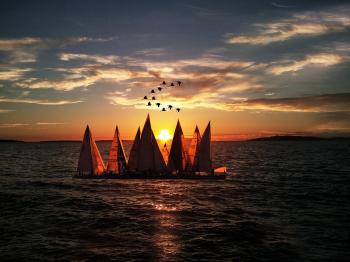 Sailboats Sailing on Sea during Sunset