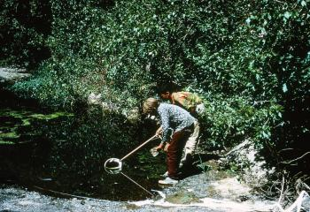 San Francisquito Creek (September 1968)
