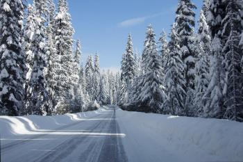 Santiam Pass, Cascade Range, Oregon